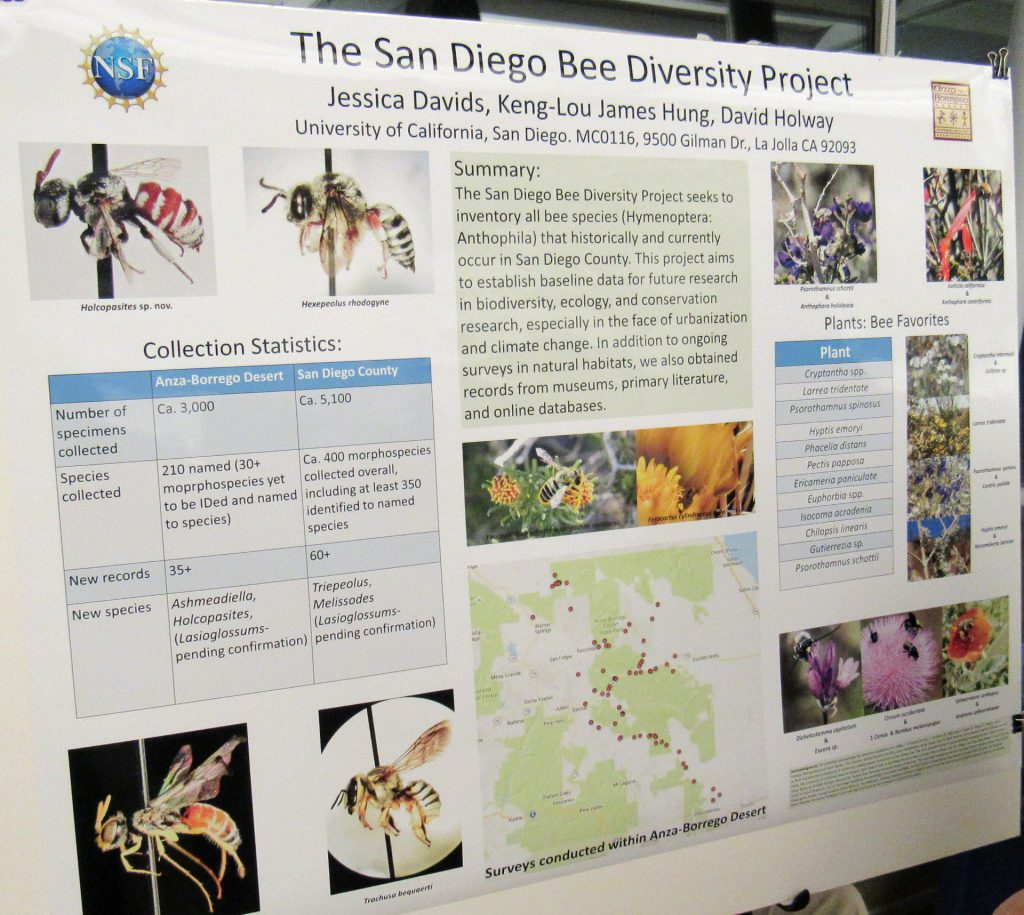Bees research poster