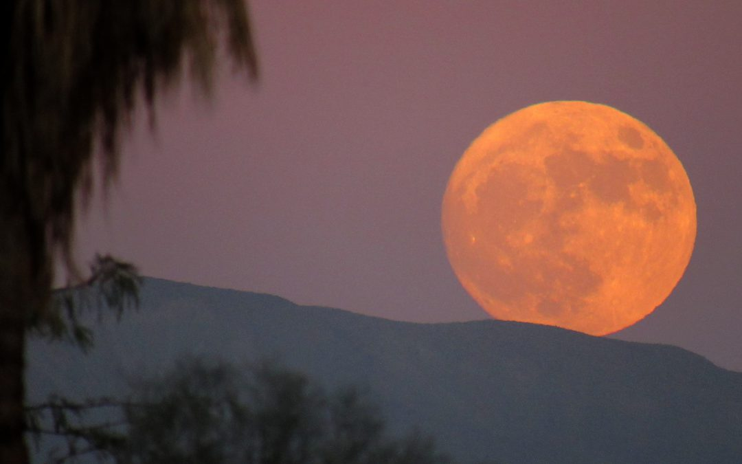 November 13th Supermoon over Anza-Borrego Desert