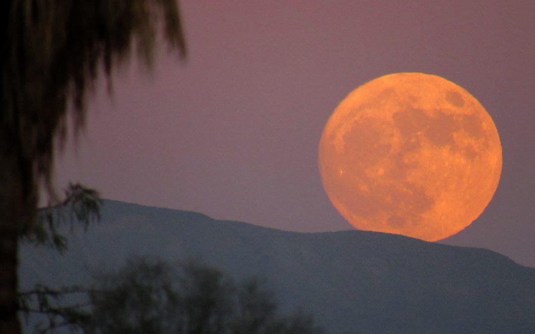November 13th Supermoon over Anza-Borrego Desert