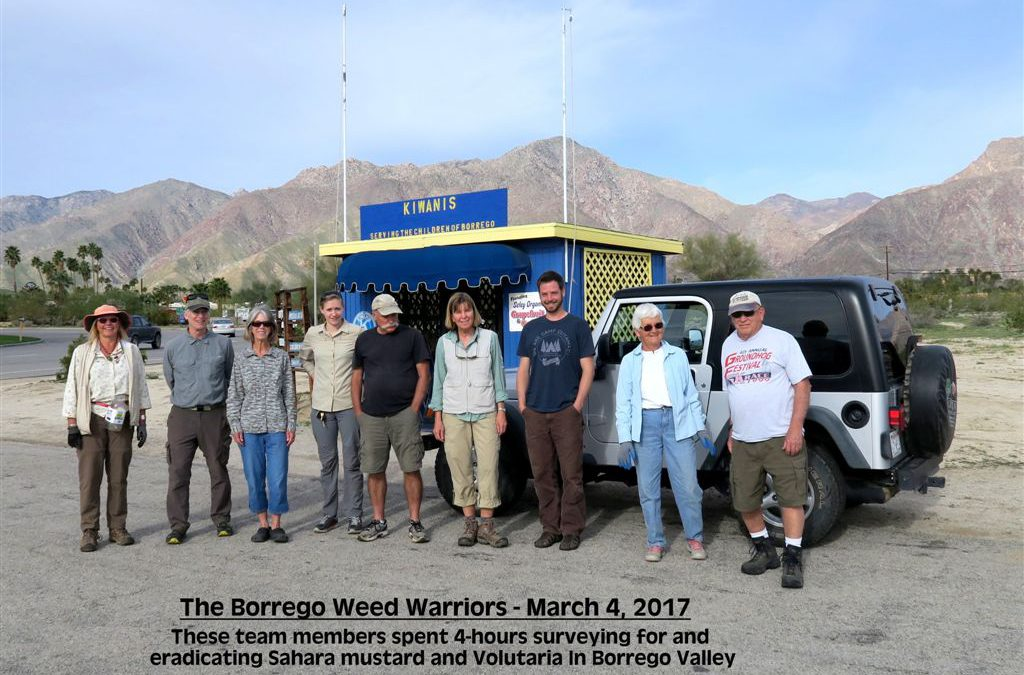 Borrego Weed Warrior Photo update March 6 – 2017