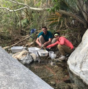 Conducting aquatic invertebrate surveys